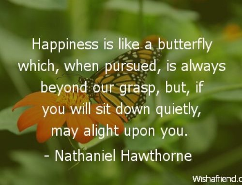 The Illusive Butterfly Called Happiness